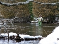 AuSable River fishing, Ken Wright photographer
