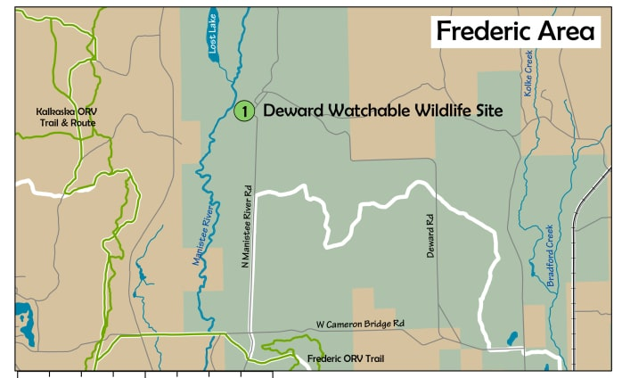The AuSable Birding Trail: Frederic Area