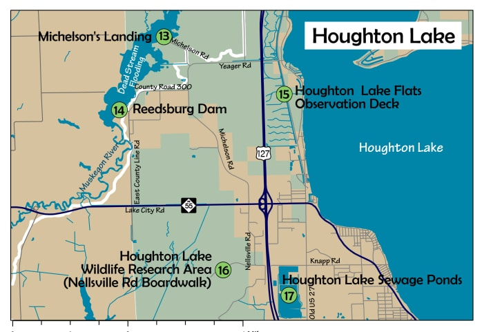 The AuSable Birding Trail: Houghton Lake Area