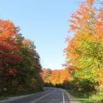 Fall Color, road closure