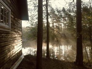 Cabins in Grayling MI