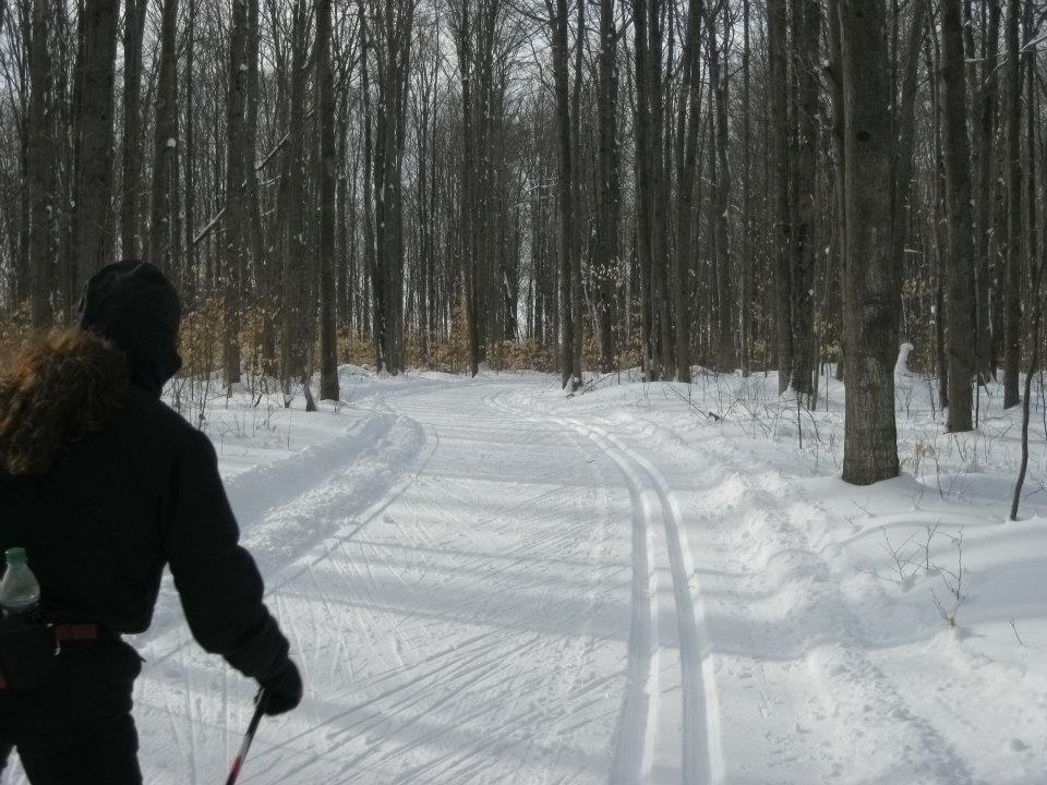 XC Ski Conditions 2/16