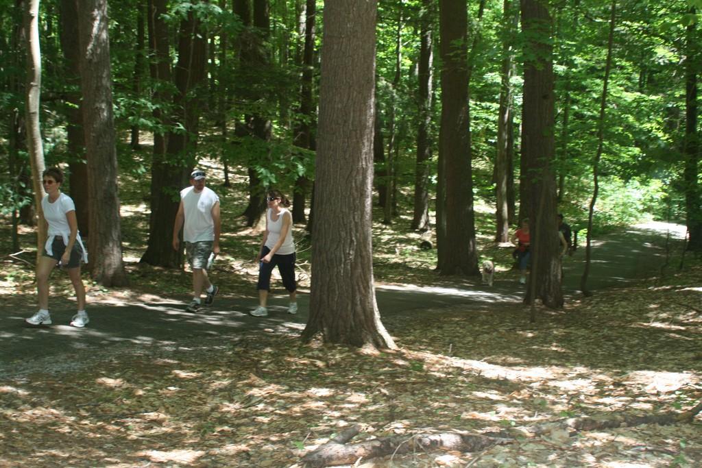 Hiking in Grayling MI