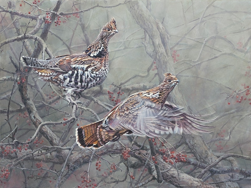 Grouse by artist Kim Diment