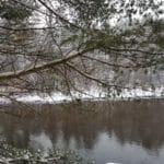 Snow 1/9