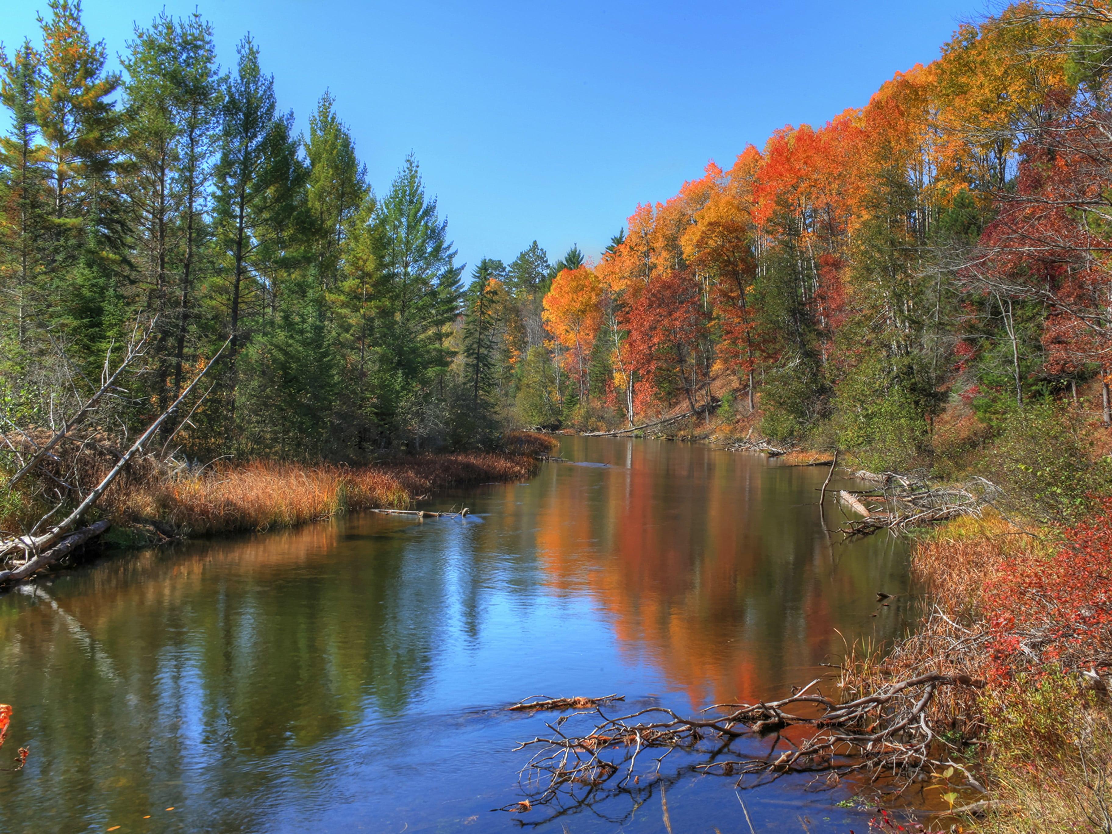 An AuSable Canoe Trip Can be Magical