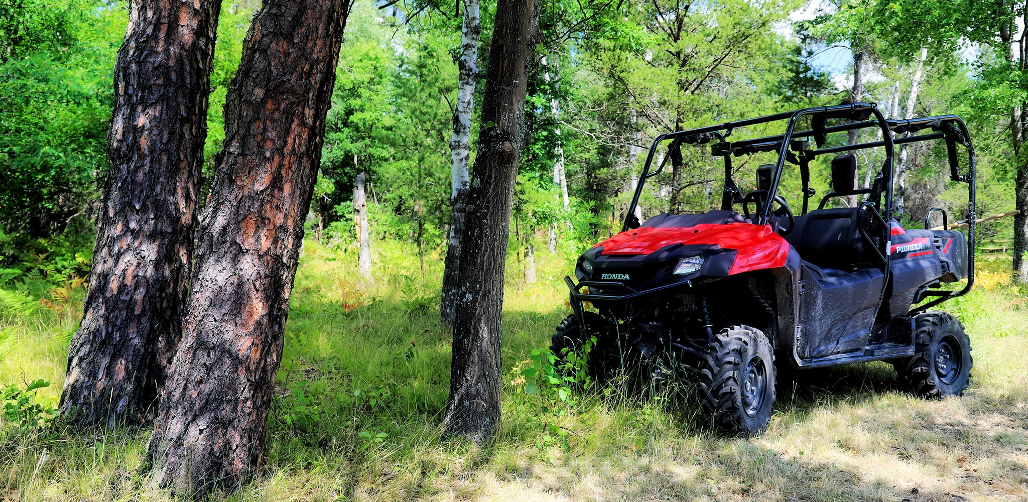 Ride the ORV Trails