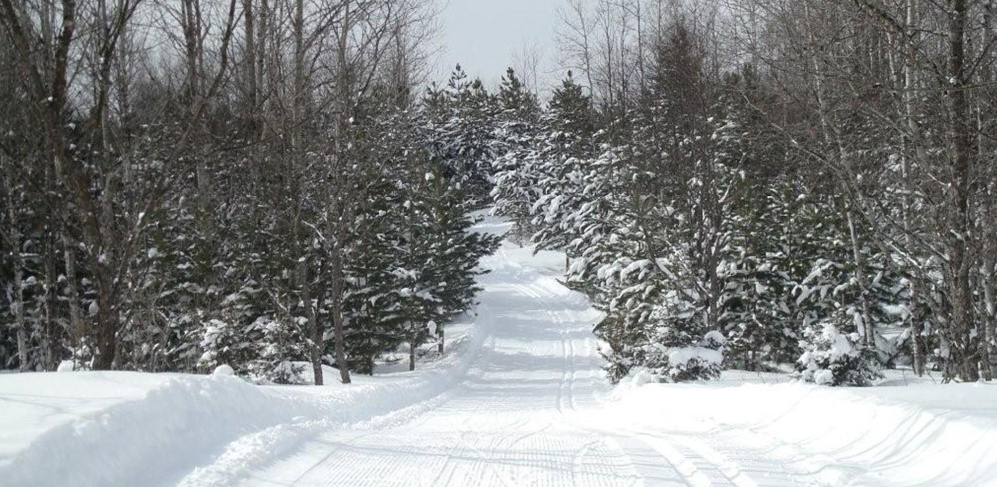 Snow conditions 12/6