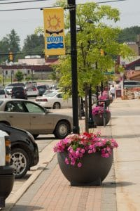 Downtown Flowers, photo by Lisa Oliver