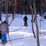 Take a Hike! Guided Snowshoe Hikes