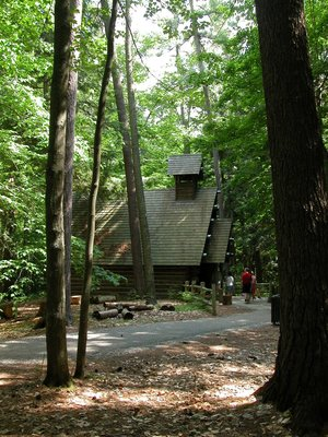 Hartwick Pines State Park's 13th Annual Forest Fest Set for Aug. 14